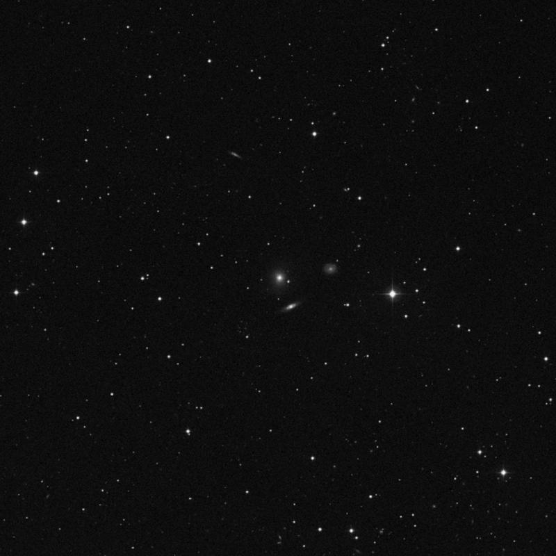 Image of IC 107 - Elliptical Galaxy in Pisces star