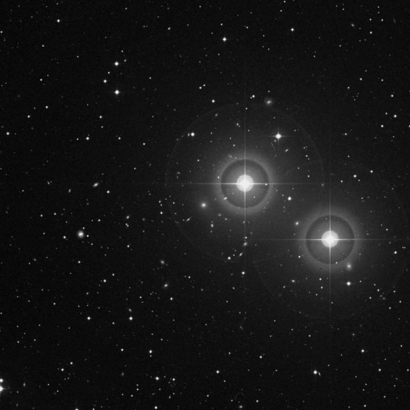 Image of IC 115 - Elliptical Galaxy in Pisces star