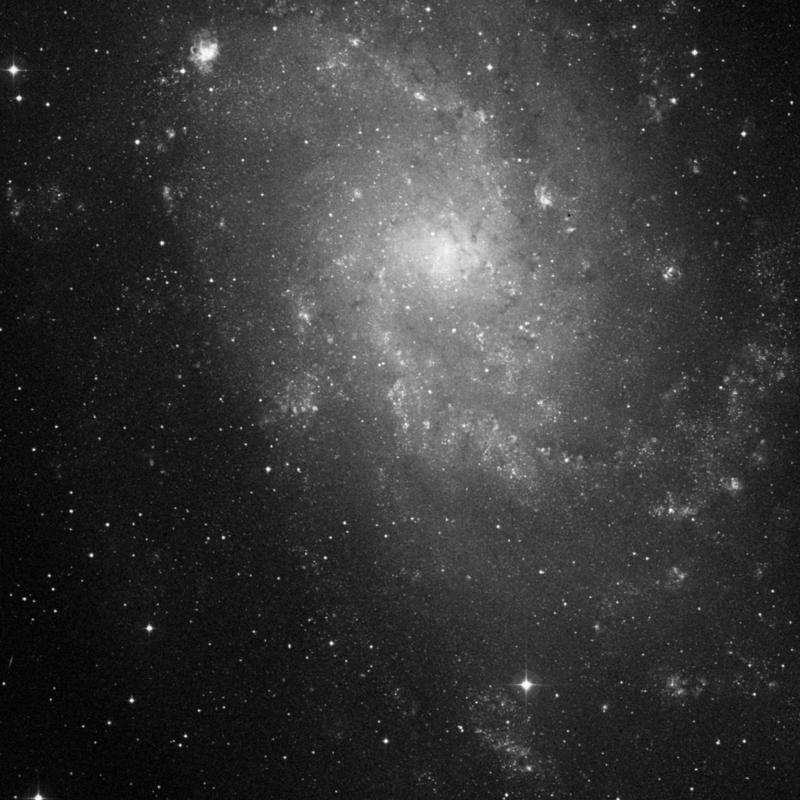 Image of IC 139 - Association of Stars in Triangulum star