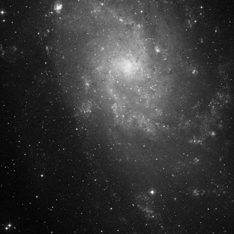 Image of IC 140 - Association of Stars in Triangulum star