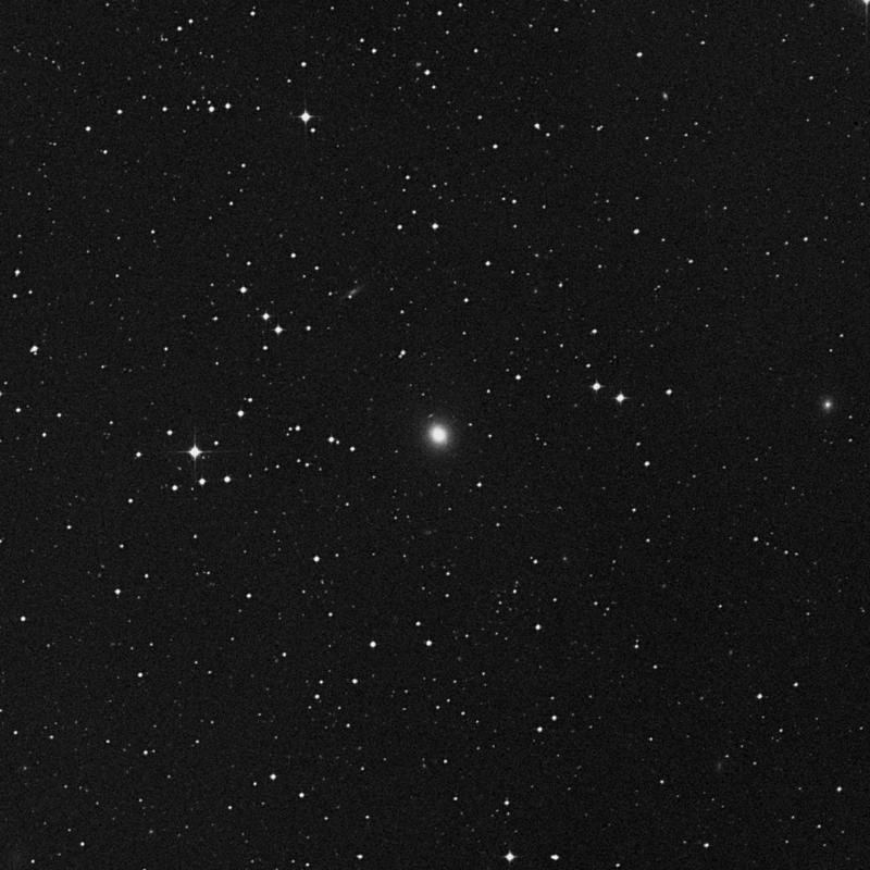 Image of NGC 5017 - Elliptical Galaxy star