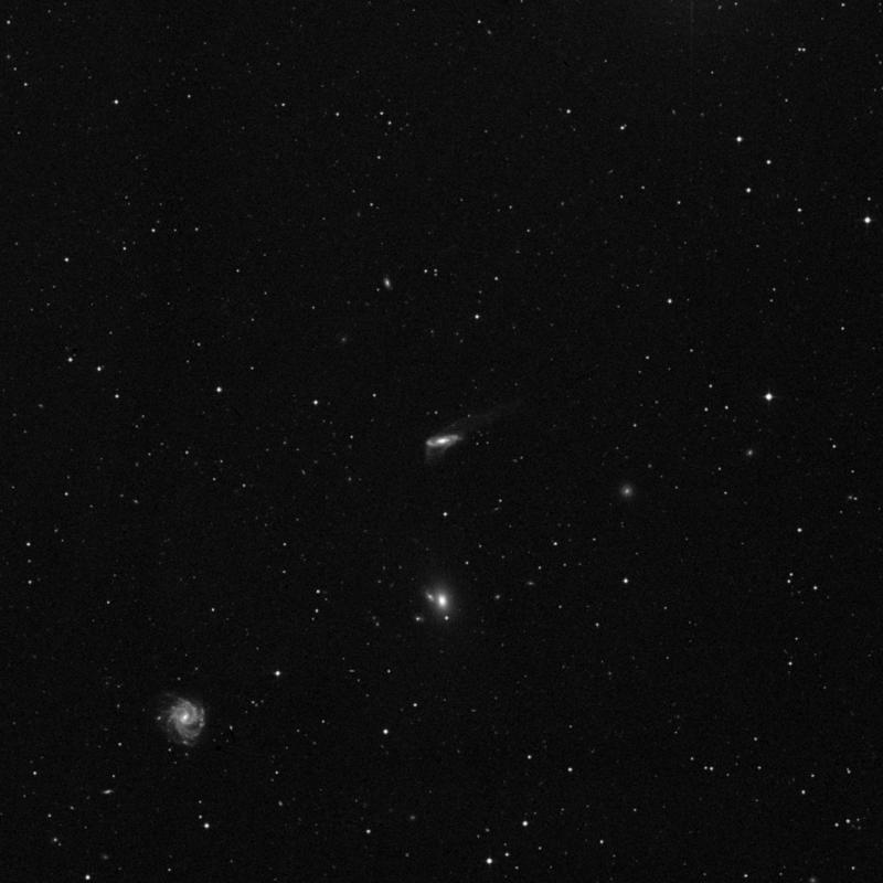Image of NGC 5221 - Intermediate Spiral Galaxy star