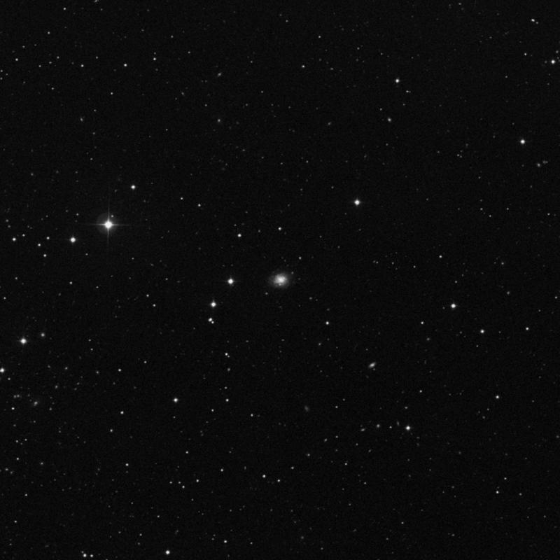 Image of NGC 5336 - Intermediate Spiral Galaxy in Canes Venatici star