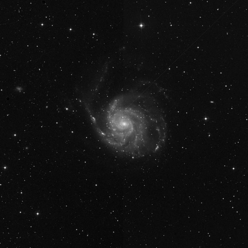 Image of Messier 101 (The Pinwheel Galaxy) - Intermediate Spiral Galaxy star