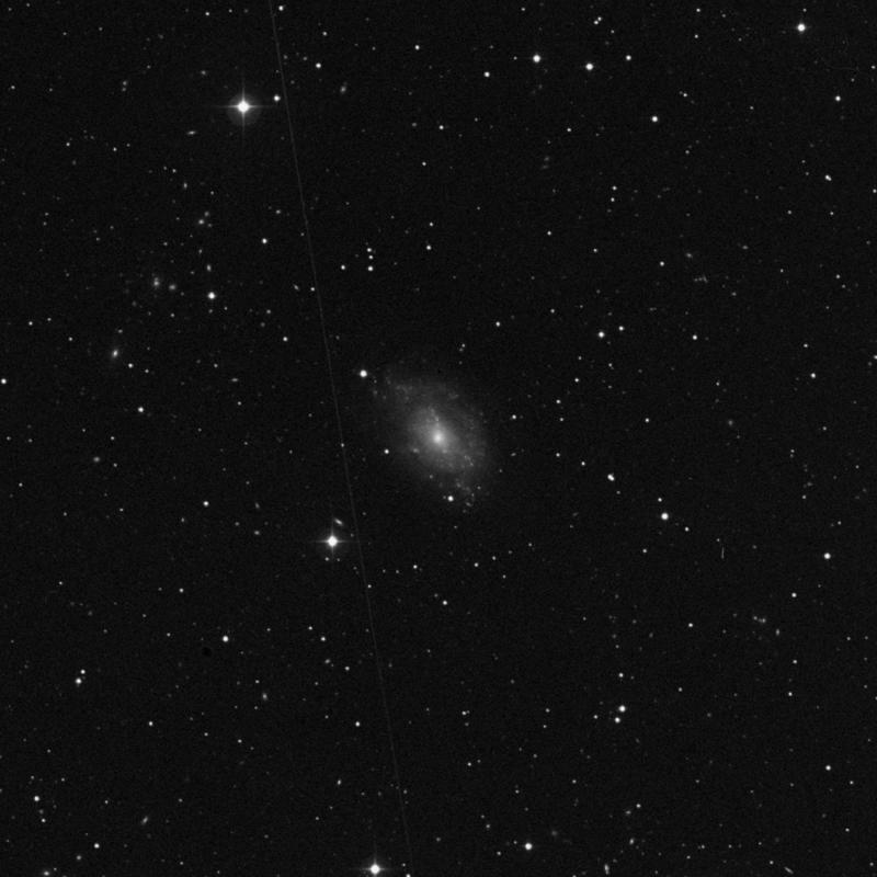 Image of NGC 5585 - Intermediate Spiral Galaxy in Ursa Major star
