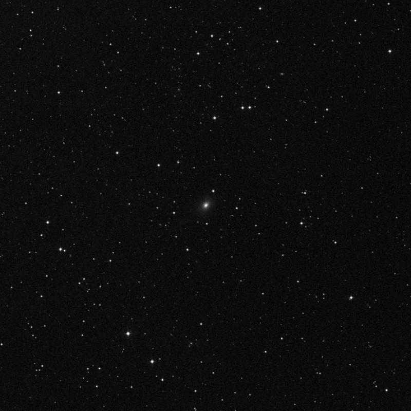 Image of IC 1154 - Elliptical Galaxy in Ursa Minor star