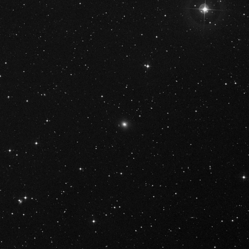 Image of IC 1211 - Elliptical Galaxy in Draco star