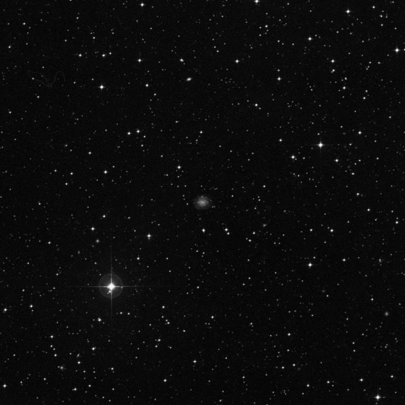 Image of NGC 6993 -  Galaxy star