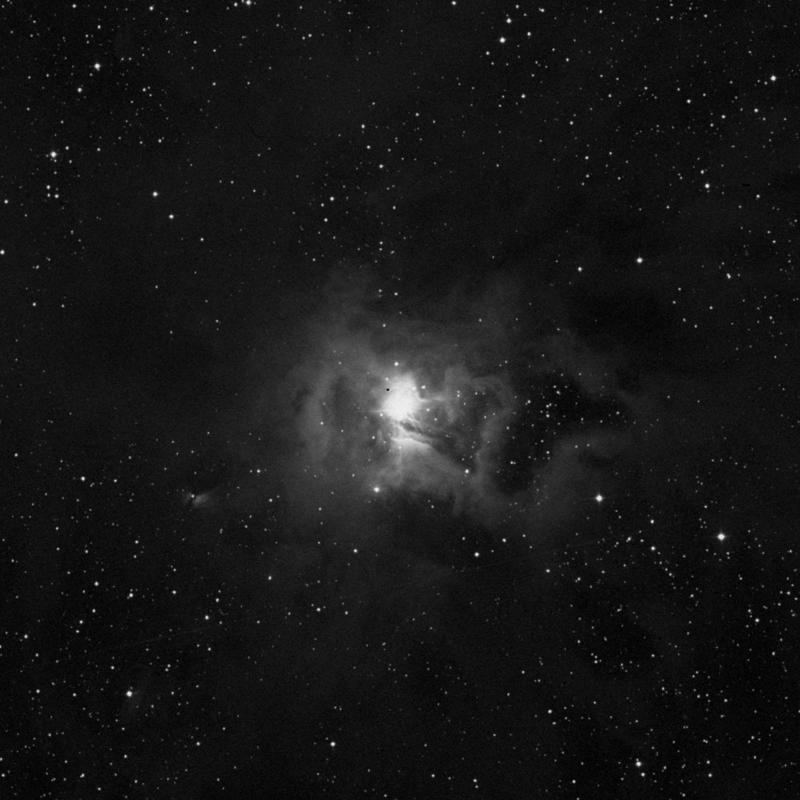 Image of NGC 7023 (Iris Nebula) - Nebula in Cepheus star