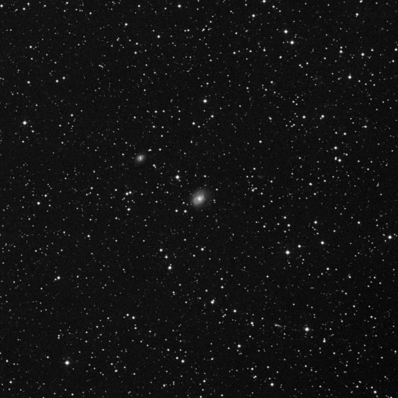Image of NGC 7042 - Spiral Galaxy in Pegasus star