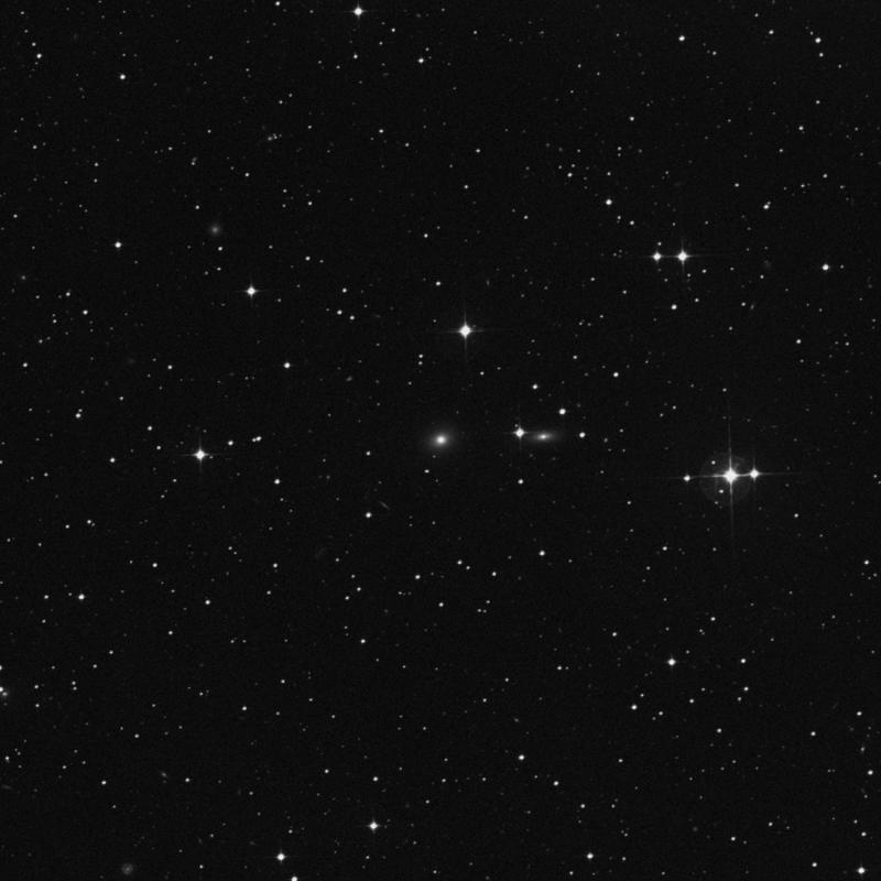 Image of NGC 7075 - Elliptical Galaxy in Grus star