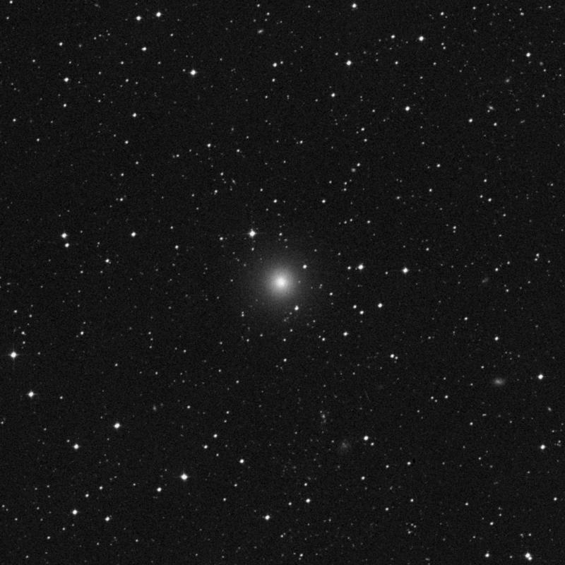Image of NGC 7144 - Elliptical Galaxy in Grus star