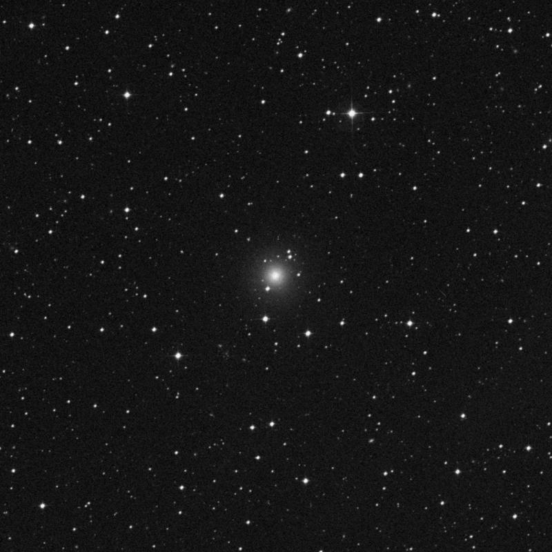 Image of NGC 7145 - Elliptical Galaxy in Grus star