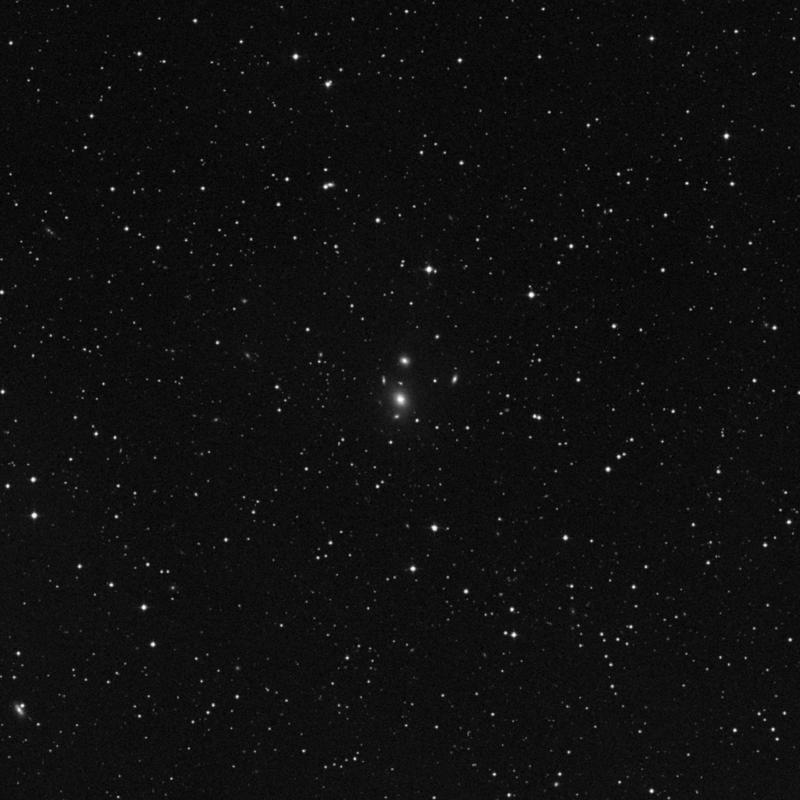 Image of NGC 7194 - Elliptical Galaxy in Pegasus star