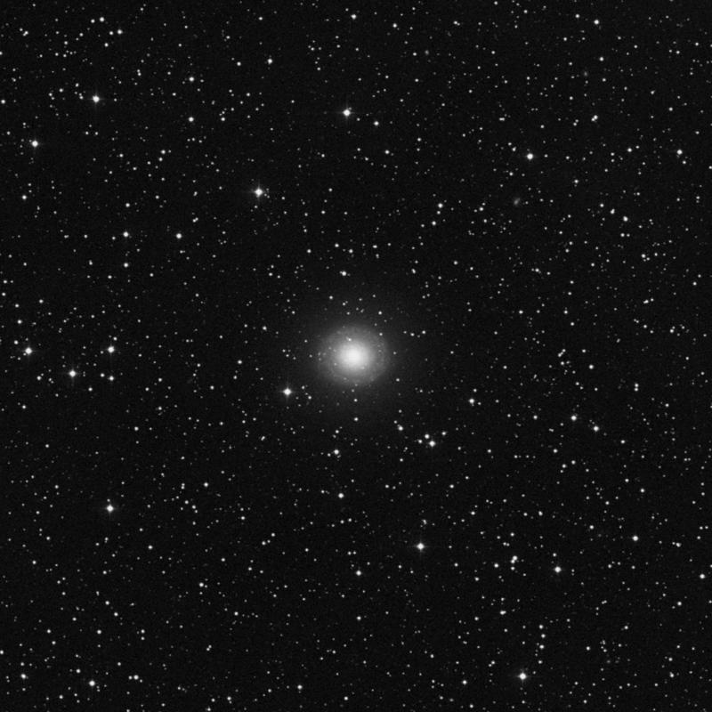 Image of NGC 7217 - Spiral Galaxy star