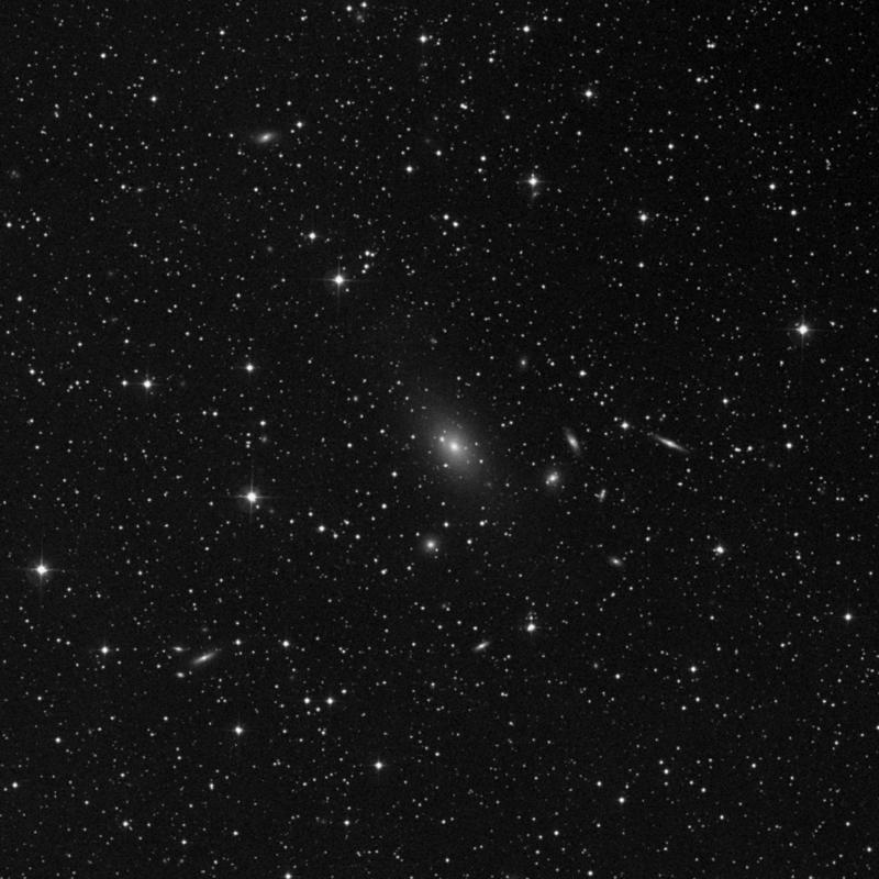 Image of NGC 7242 NED02 - Galaxy in Lacerta star