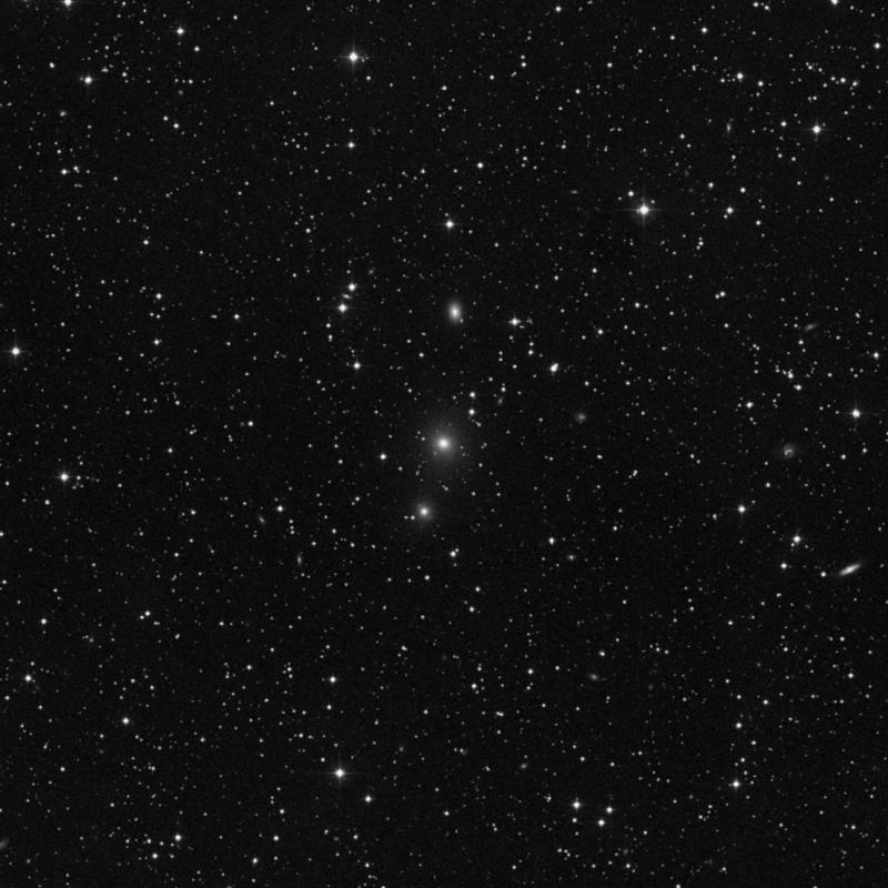 Image of NGC 7274 - Elliptical Galaxy in Lacerta star