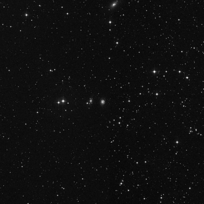 Image of NGC 7323 - Spiral Galaxy in Pegasus star