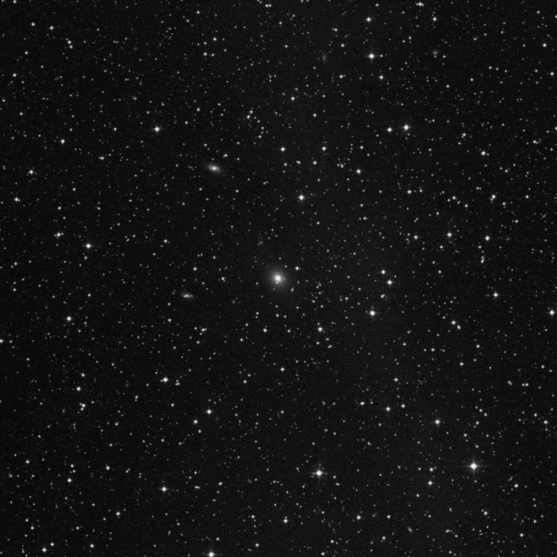 Image of NGC 7330 - Elliptical Galaxy in Lacerta star