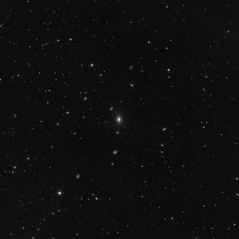 Image of NGC 7362 - Elliptical Galaxy in Pegasus star