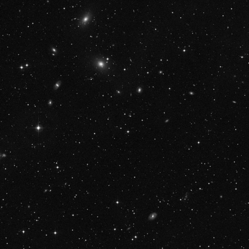 Image of NGC 7384 - Star star