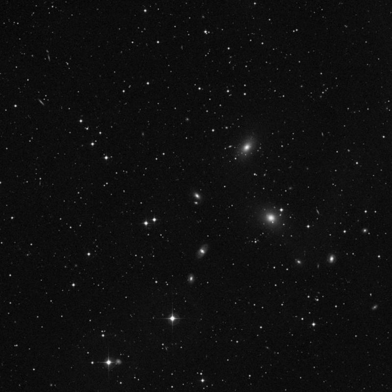 Image of NGC 7387 - Elliptical Galaxy star
