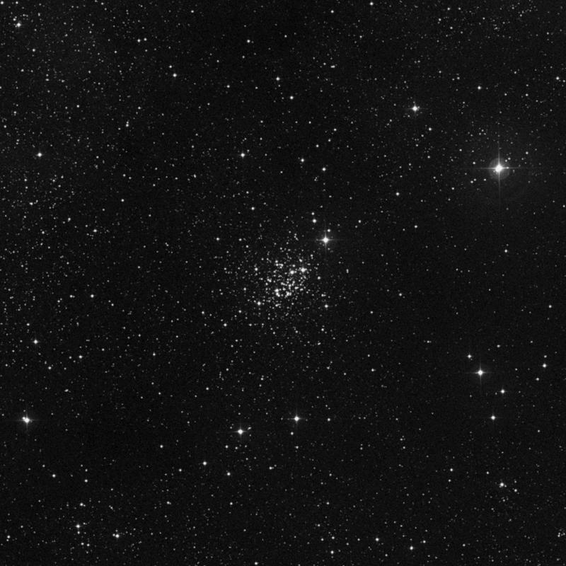 Image of NGC 7419 - Open Cluster in Cepheus star