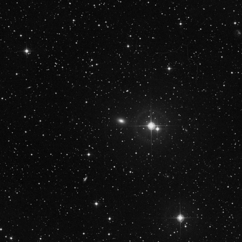 Image of NGC 7426 - Elliptical Galaxy in Lacerta star