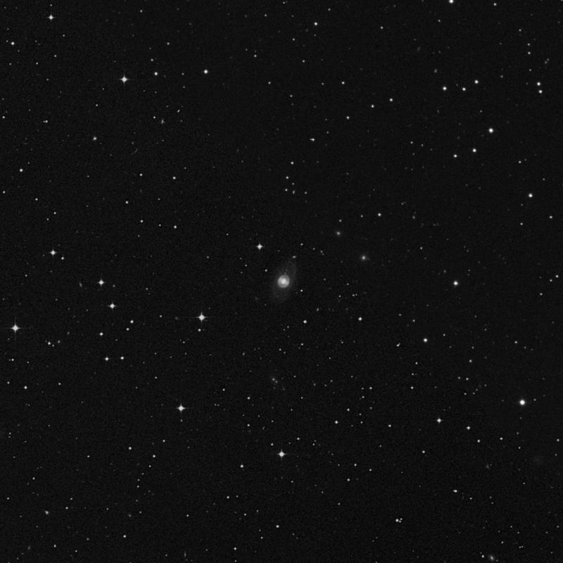 Image of NGC 7428 - Spiral Galaxy star