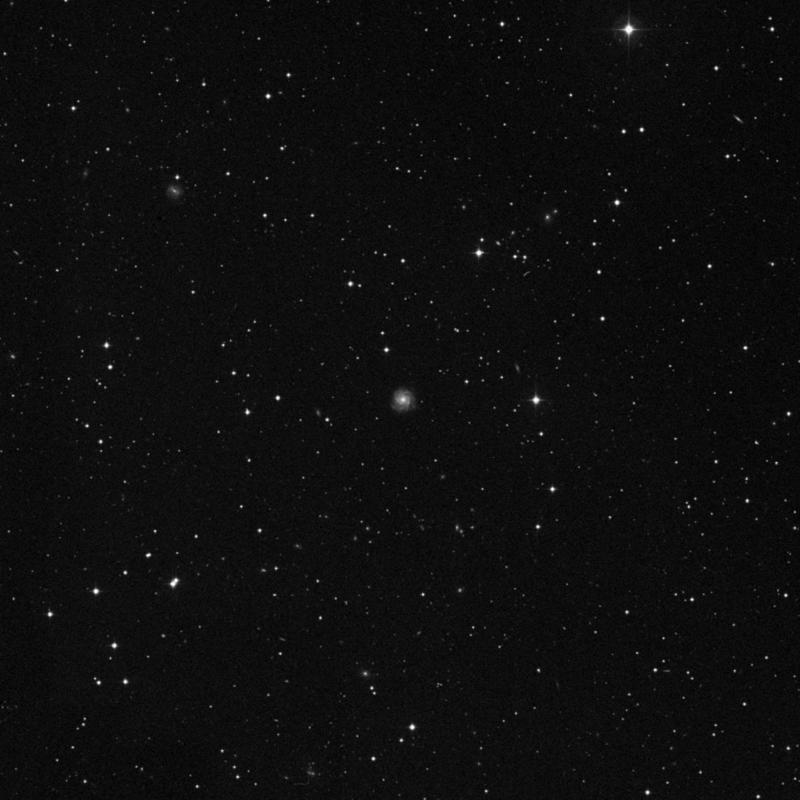 Image of NGC 7442 - Spiral Galaxy star
