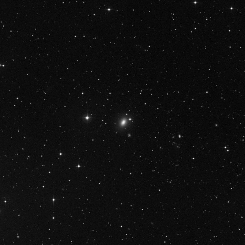 Image of NGC 7454 - Elliptical Galaxy in Pegasus star