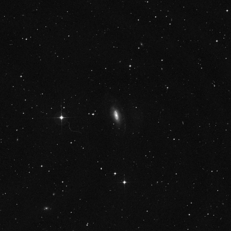Image of NGC 7531 - Intermediate Spiral Galaxy in Grus star