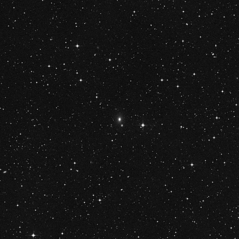 Image of IC 1356 - Elliptical Galaxy in Capricornus star