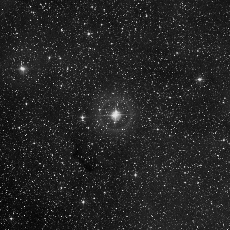 Image of IC 1396 - Star Cluster + Nebula in Cepheus star