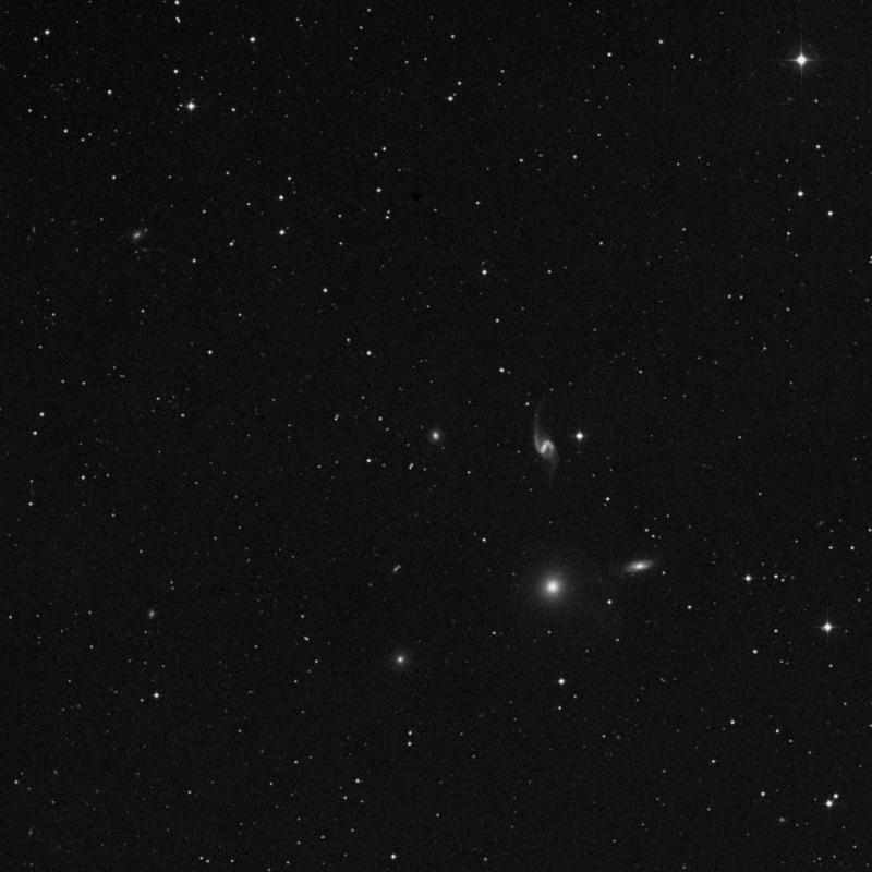 Image of NGC 7553 - Elliptical Galaxy in Pegasus star