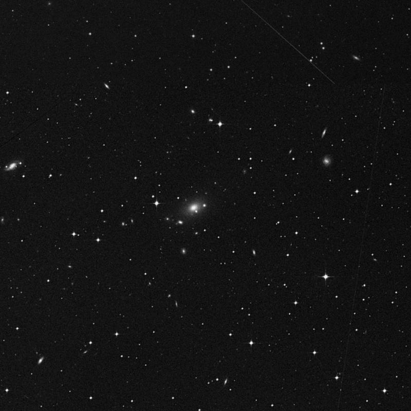 Image of NGC 7554 - Elliptical Galaxy star