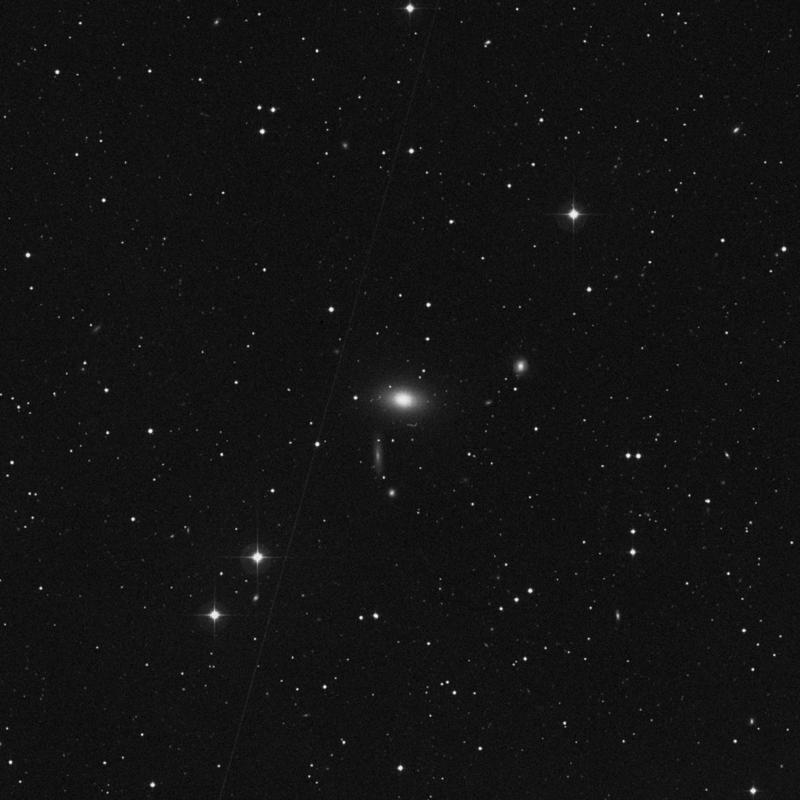 Image of NGC 7562 - Elliptical Galaxy star