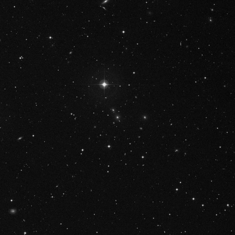 Image of NGC 7584 - Galaxy in Pegasus star
