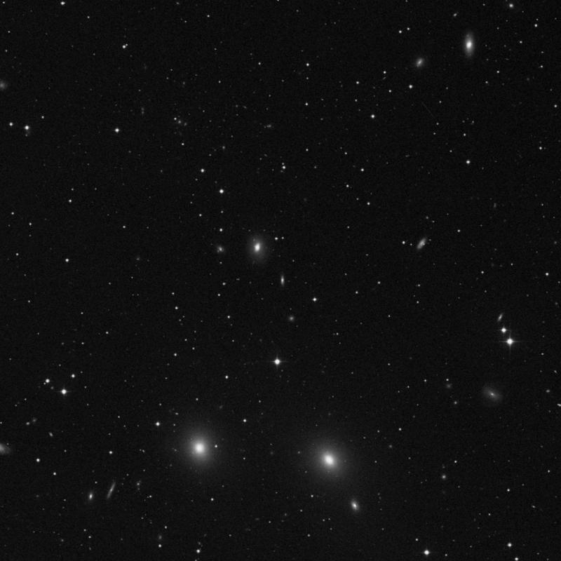 Image of NGC 7621 - Galaxy in Pegasus star