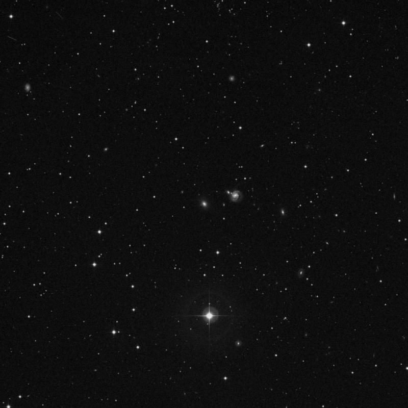 Image of NGC 7675 - Elliptical/Spiral Galaxy star