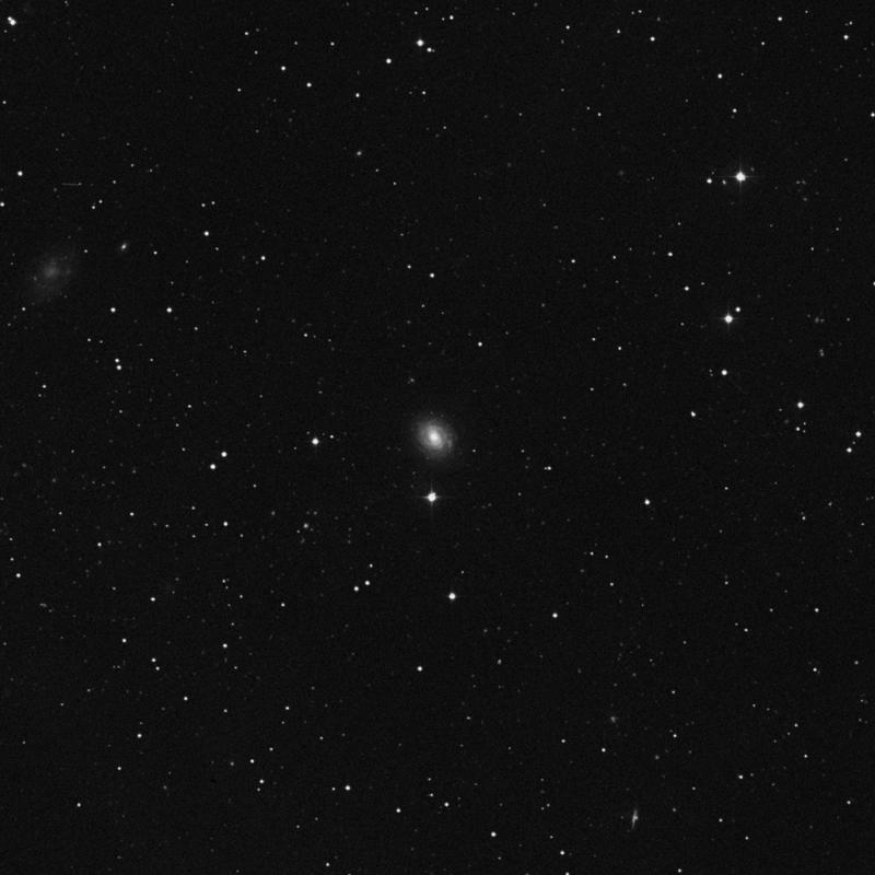 Image of NGC 7716 - Spiral Galaxy star