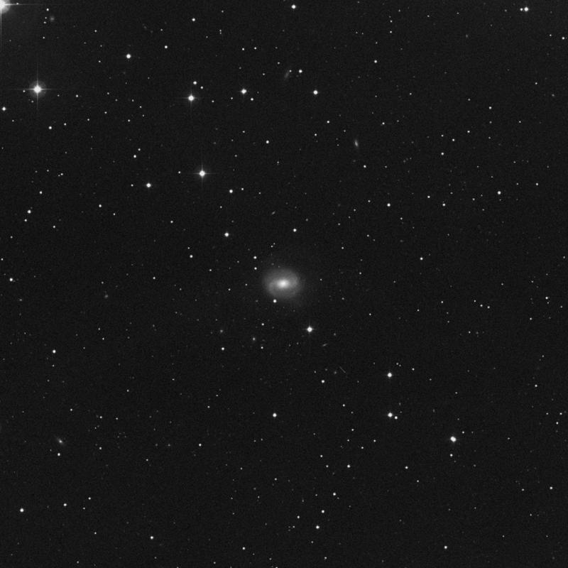 Image of NGC 7743 - Lenticular Galaxy in Pegasus star