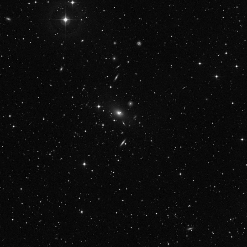Image of NGC 7766 - Galaxy in Pegasus star