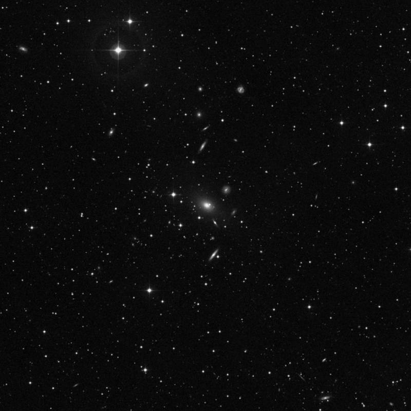 Image of NGC 7768 - Elliptical Galaxy in Pegasus star