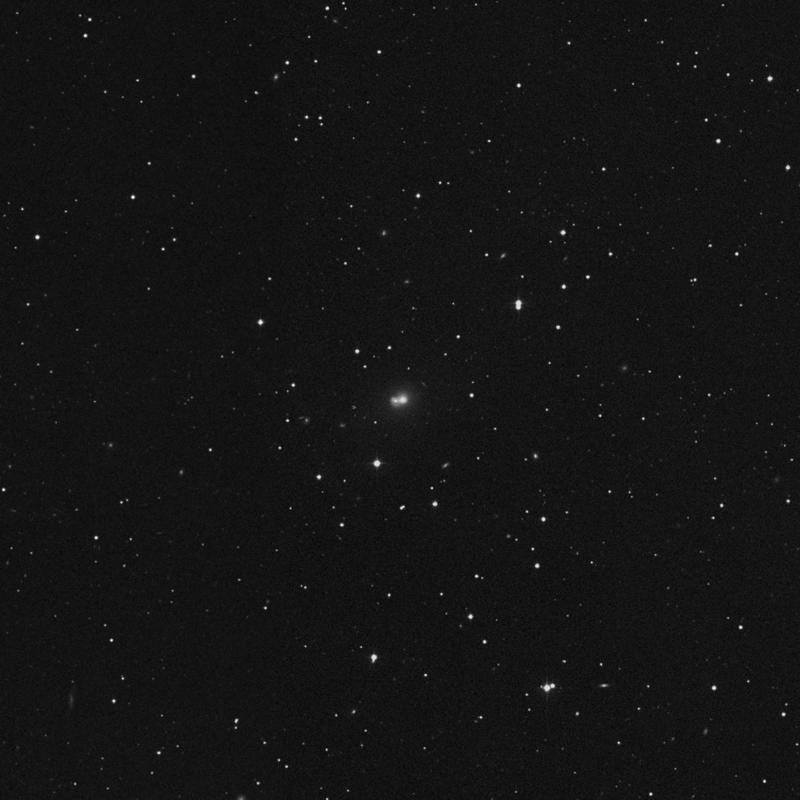 Image of NGC 7774 NED01 - Elliptical Galaxy star