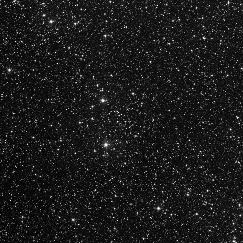 Image of IC 1442 - Open Cluster in Lacerta star