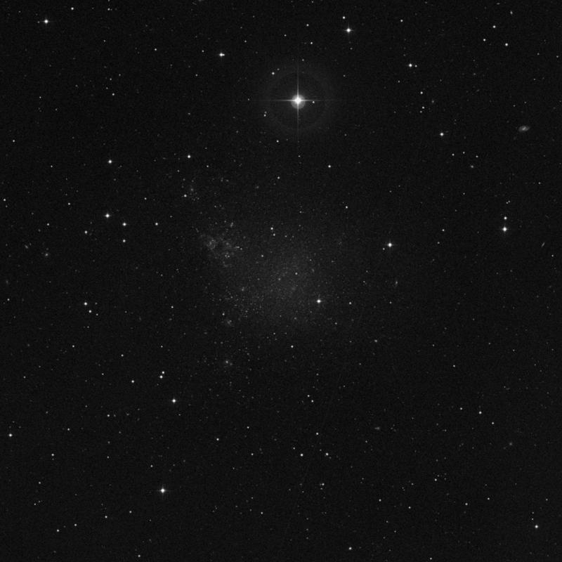 Image of IC 1613 - Irregular Galaxy star