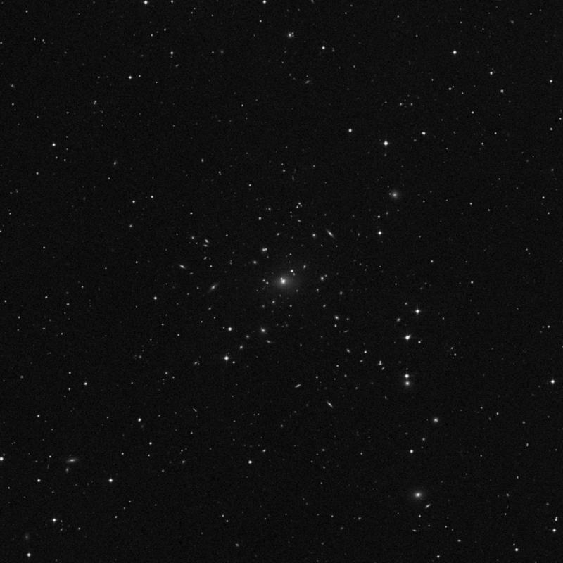 Image of IC 1695 - Elliptical Galaxy in Pisces star