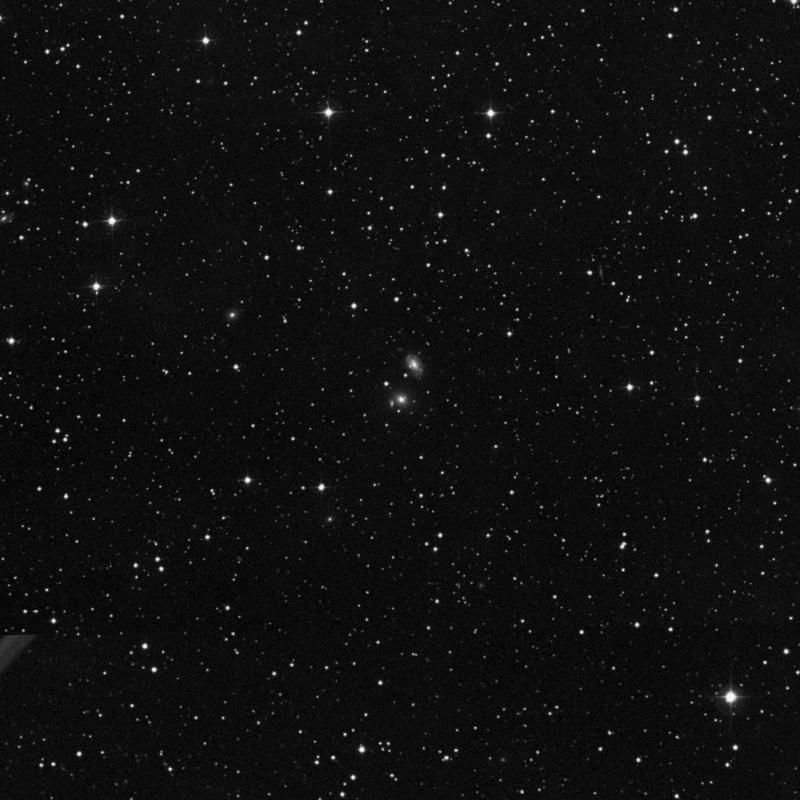 Image of IC 305 - Elliptical Galaxy star