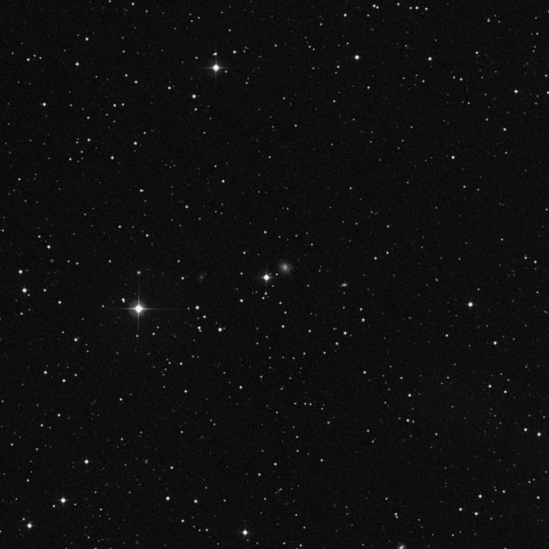 Image of IC 2283 - Star in Cancer star